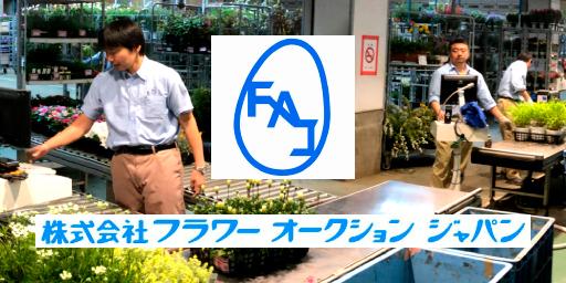 株式会社フラワーオークションジャパン